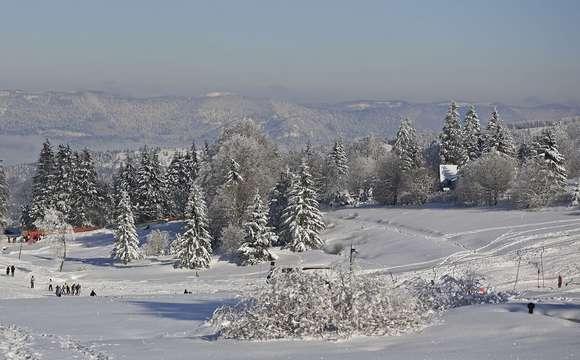 Das Bruche Tal im Winter